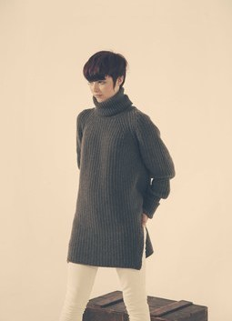 Oversized Rib Roll Neck